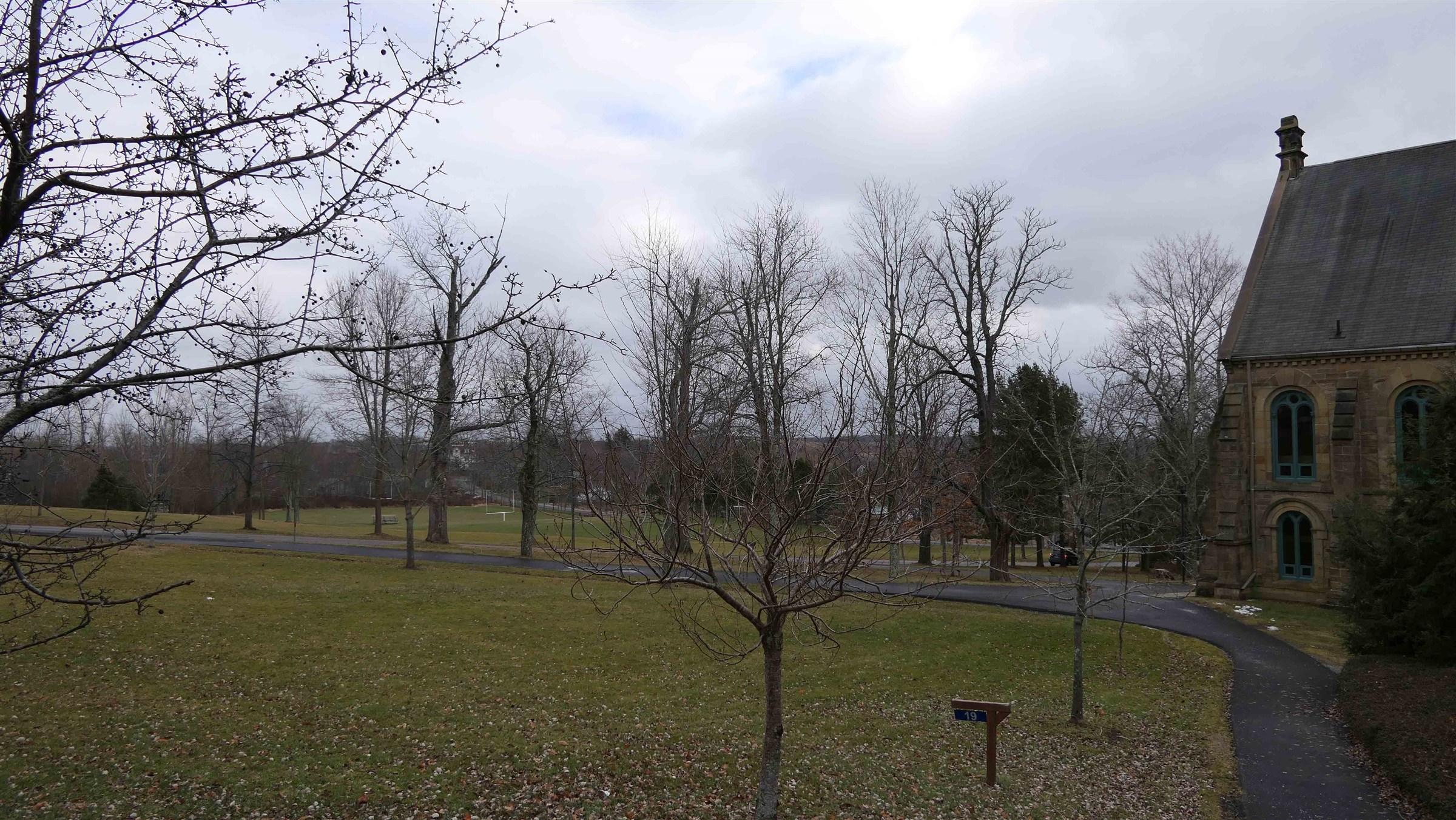 campus for intro.jpg