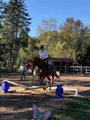 equestrian-1