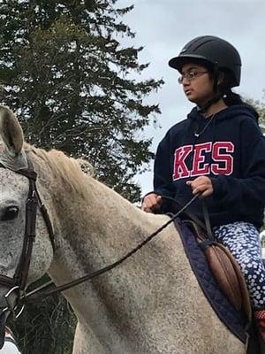 equestrian3