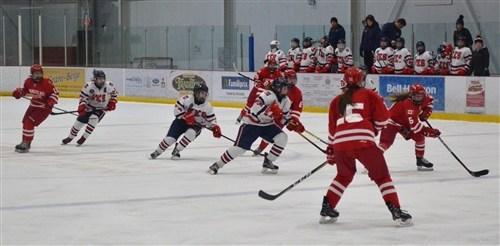 hockey2-1